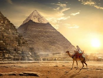 Mustard was used in Ancient Egypt