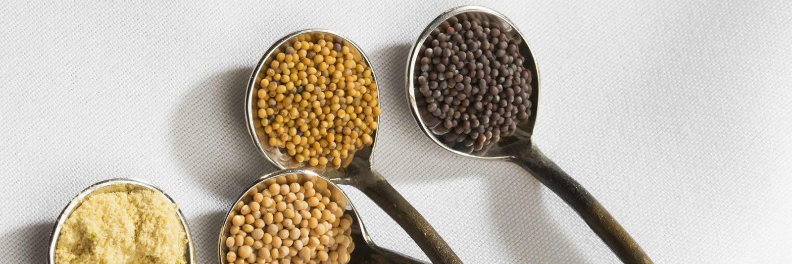 Mustard Spice Varieties